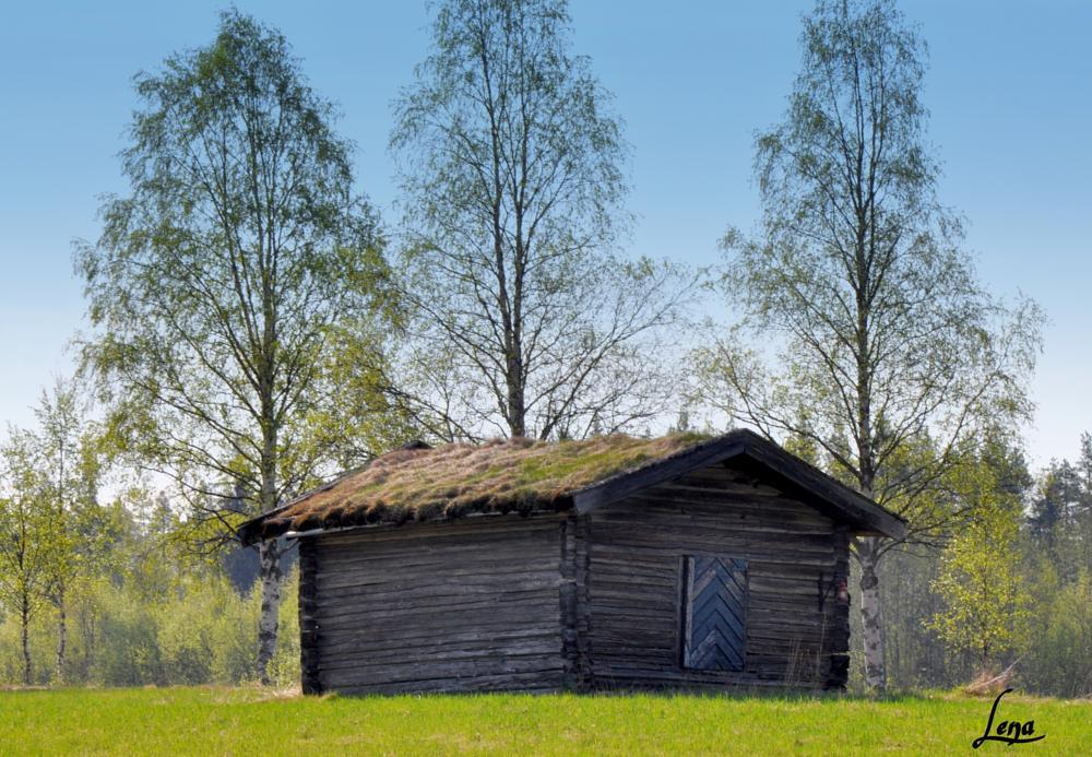 Photo in Landscape #barn old