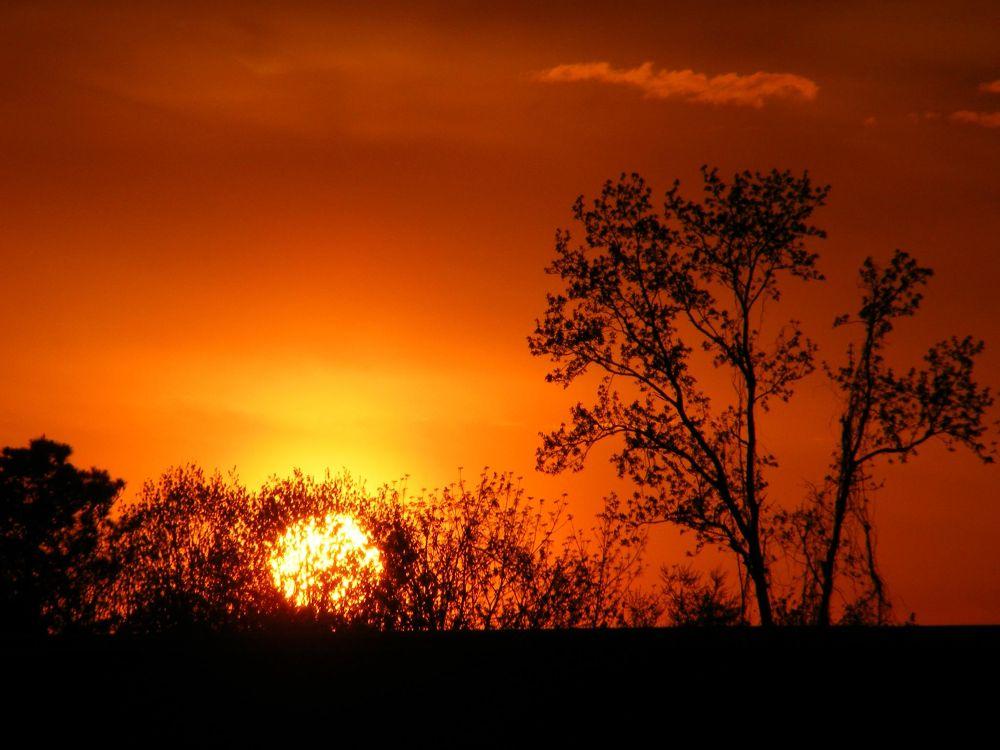Photo in Landscape #sunset #nature #sun