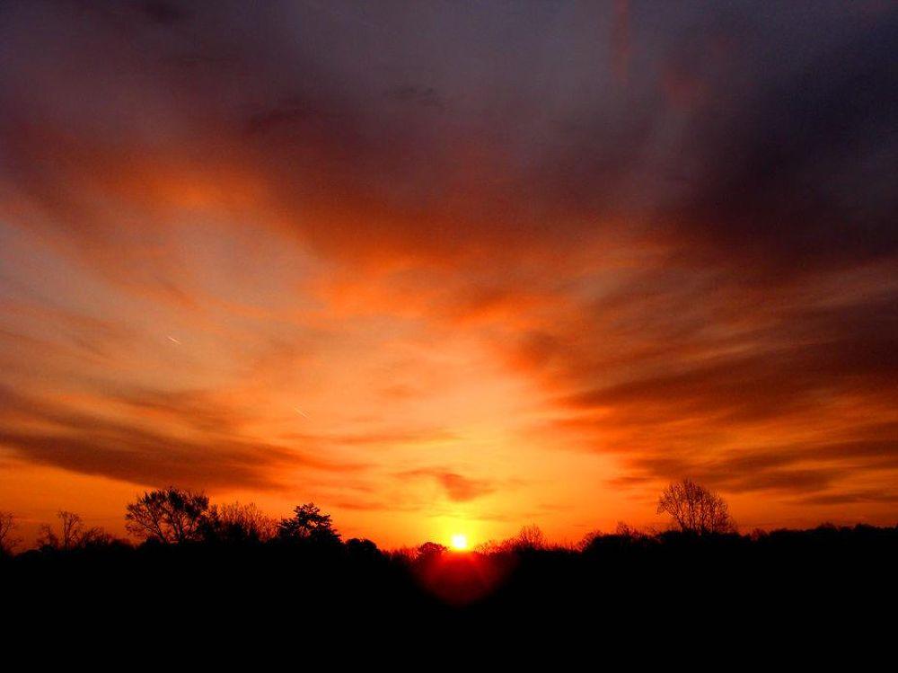 Photo in Landscape #sunrise #colors #orange #morning #landscape