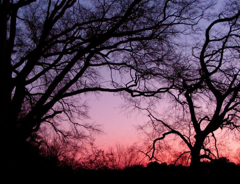 Photo in Landscape #winter #sunset #landscape
