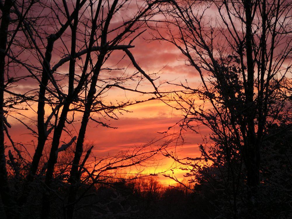 Photo in Landscape #sunset #snow #winter #sky #landscape