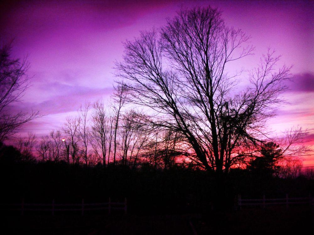 Photo in Landscape #winter #purple #sunset #pink #landscape