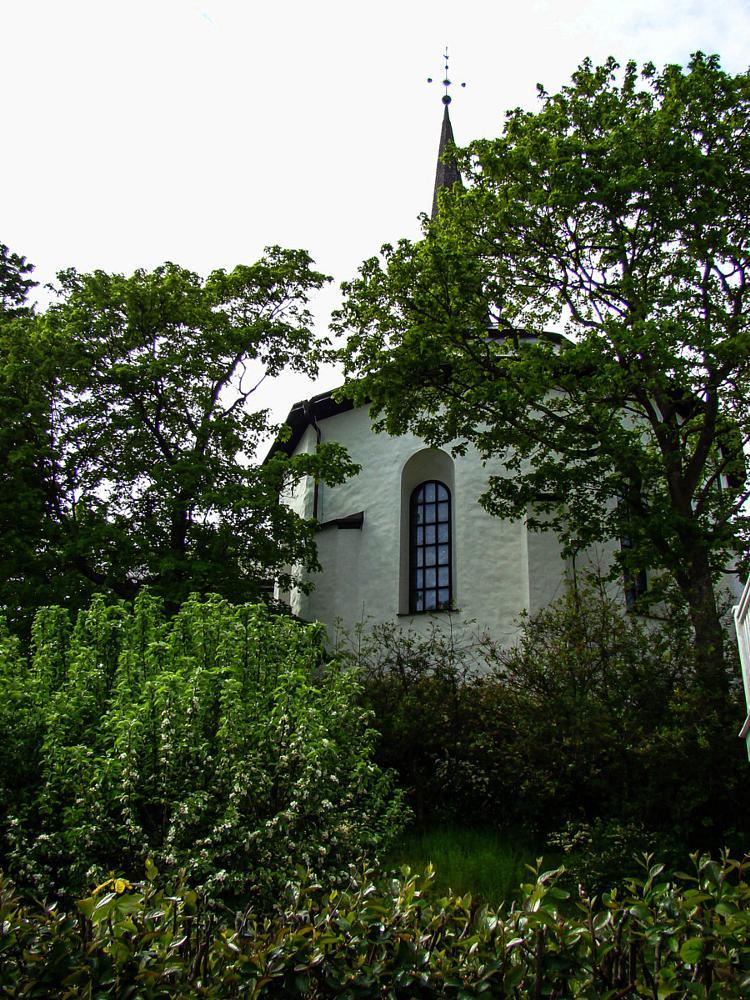 Photo in Random #church #scrub #tree