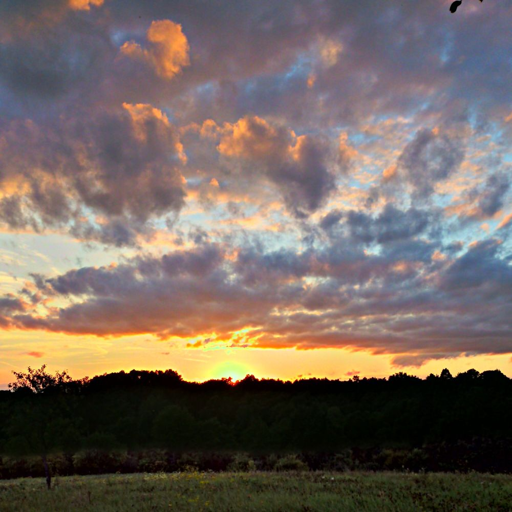 Photo in Random #sky #clouds #sun #dunset #dusk