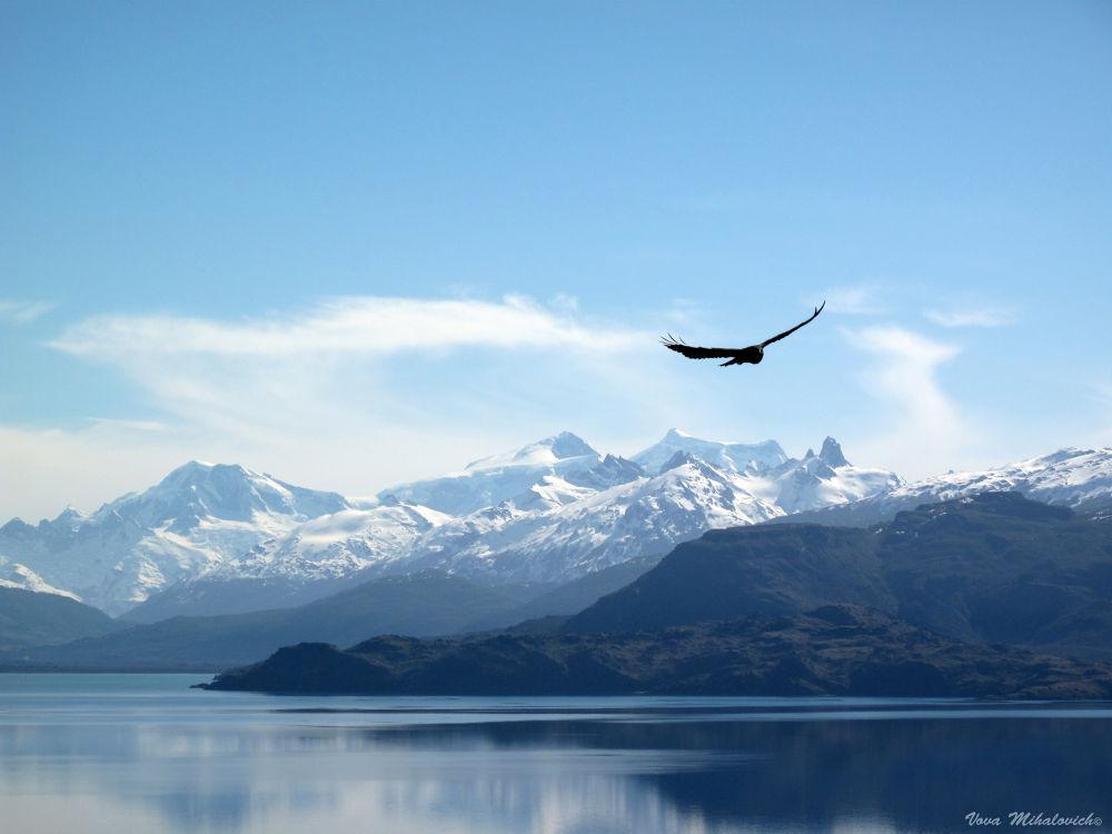 Photo in Landscape #lake #landscape #cañón #chile #g10 #condor #caratera austral #lago buenos aires