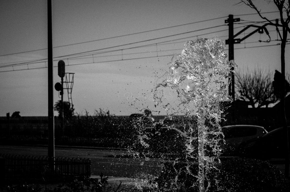 Photo in Black and White #water #sky #nature #black and white