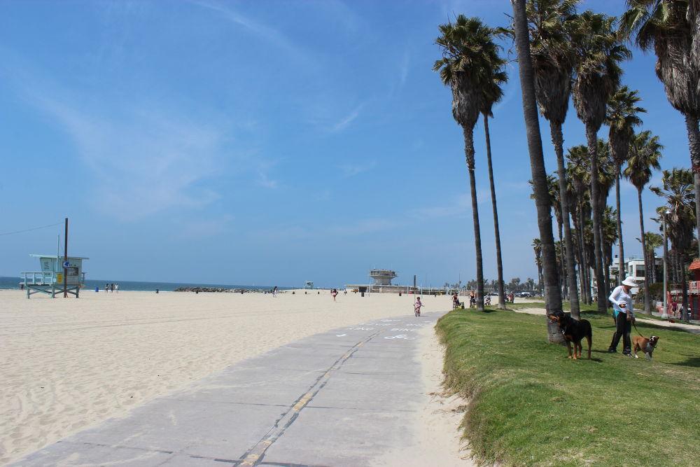 Photo in Sea and Sand #venice beach