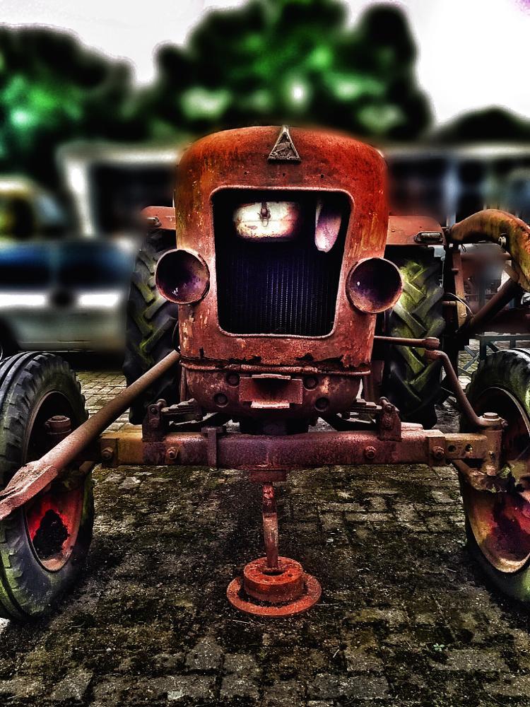 Photo in Random #traktor #schrott #rost #vanitas