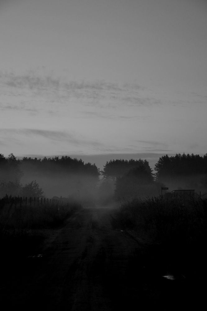 Photo in Nature #fog #scary #black&white #black #morning