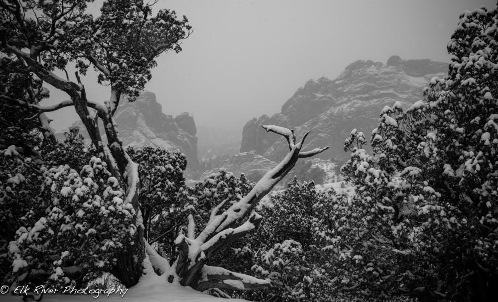 Photo in Black and White #snow #fog #colorado #garden of the gods