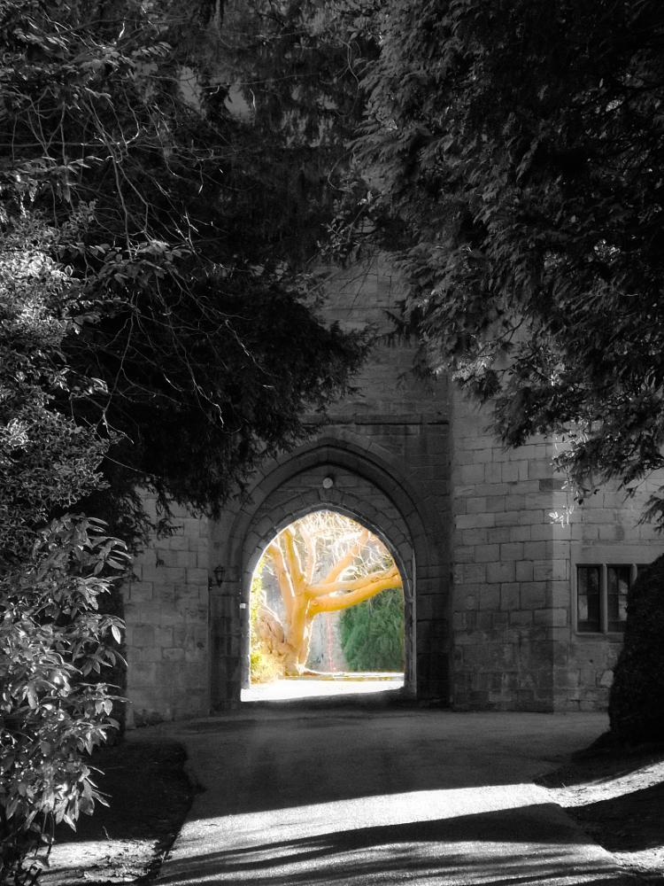 Photo in Architecture #castle #black and white