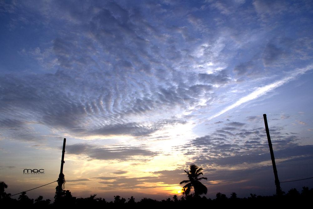 Photo in Random #youpic #india #nikon #d3100