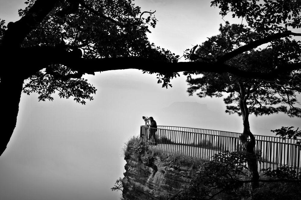 Photo in Black and White #https://www.facebook.com/emili #émilie amélia klimkowicz