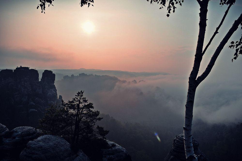 Photo in Nature #http://www.facebook.com/emilie #fot. émilie amélia klimkowicz