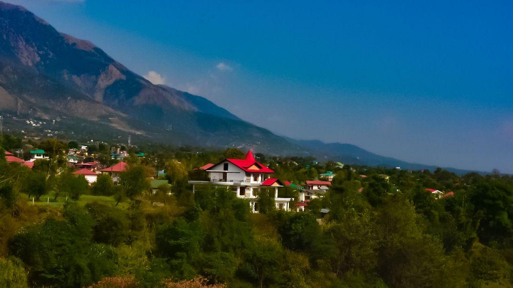 Photo in Nature #dharamshala #himalayas