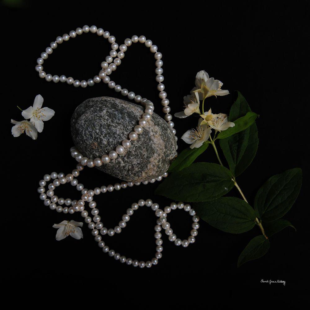 Photo in Fine Art #pearls #necklace #rock #stone #jasmine #scent #dark #black background #floral #still life