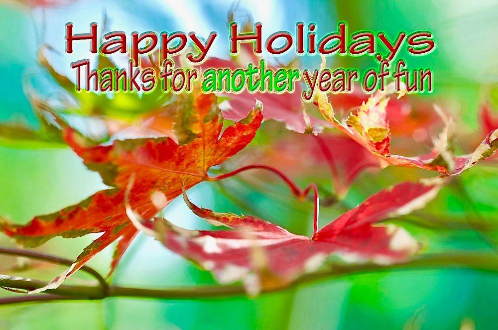 Photo in Random #leaves #happy holidays #fun #green #red #xmas