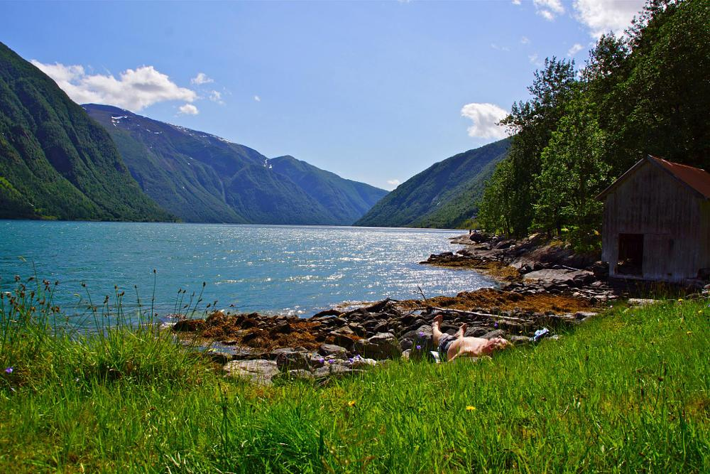 Photo in Landscape #summer #fjord #norway