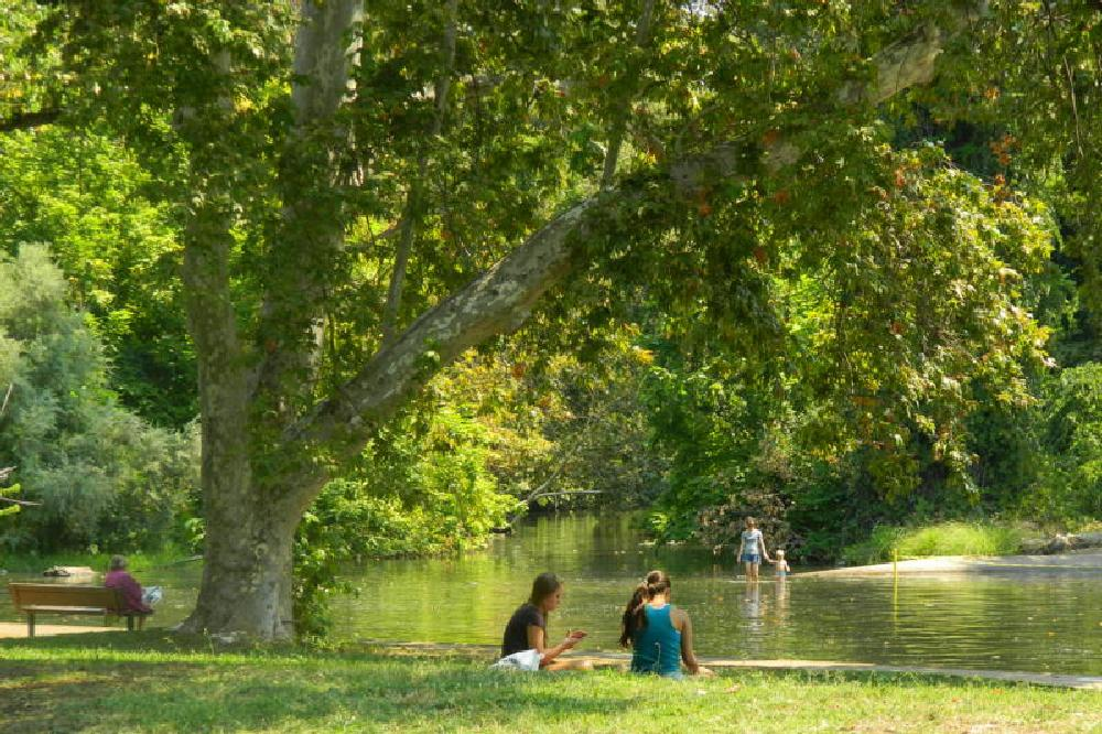 Photo in Nature #streetcontest #park #swimming creek
