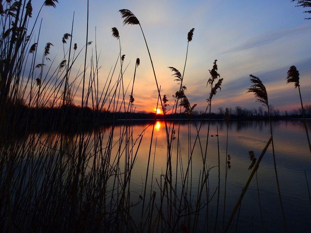 Photo in Landscape #sunrise #nature #hiking