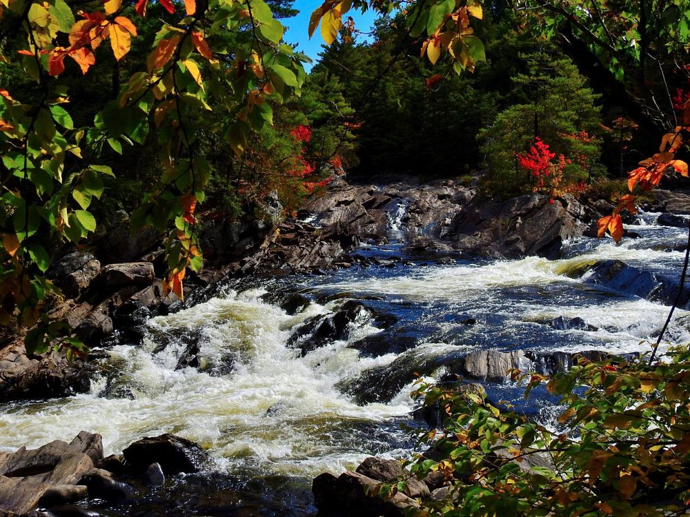 Photo in Landscape #waterfall #autumn #nature