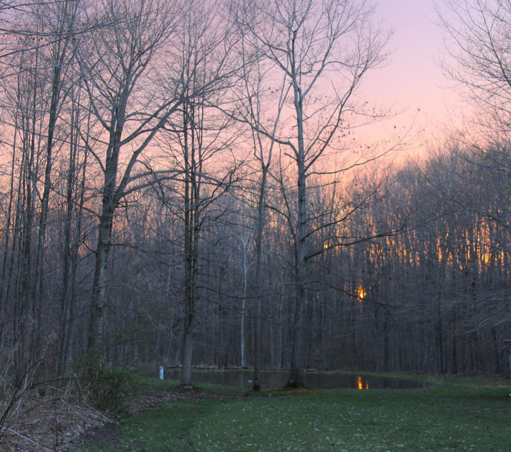 Photo in Landscape #nature #landscape #sunset #dusk #twilight