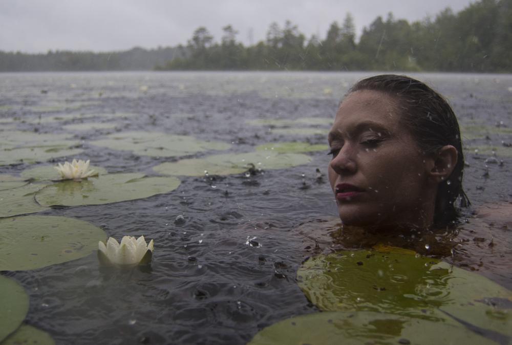 Photo in Portrait #water lillies #pond #rain