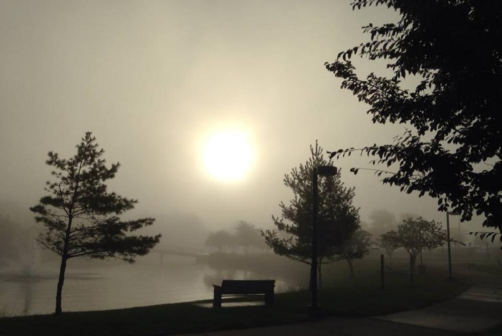 Photo in Landscape #oakland university #water #anticipation