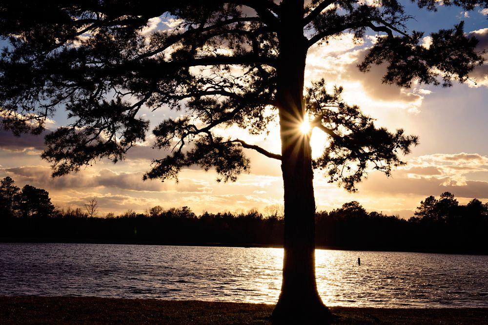Photo in Landscape #lake #rural #sunset