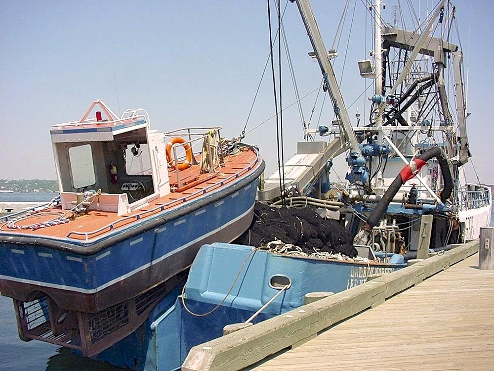 Photo in Sea and Sand #halifax #nova scotia #boats #harbour