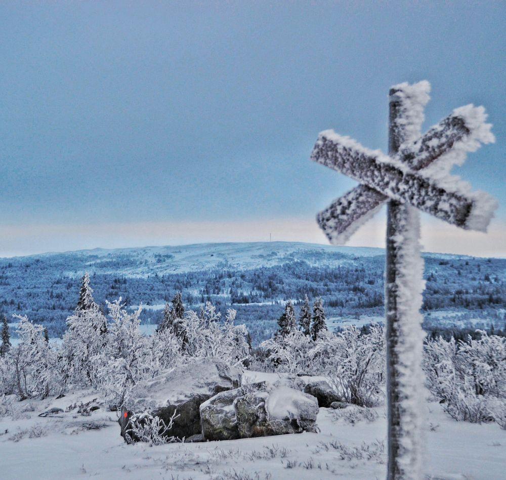 Photo in Random #frozen #winter #cold #mountain #snow #white #nature