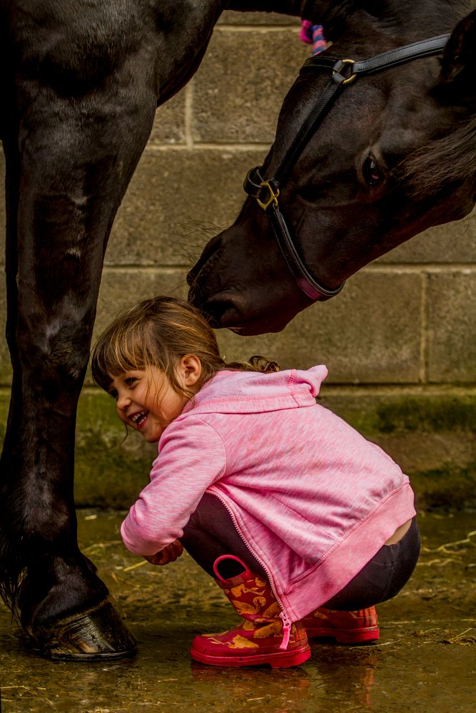 Photo in Random #equine #horse #girl #laughter #pink
