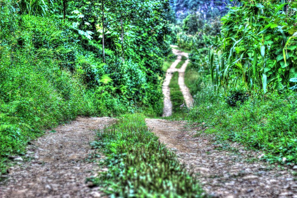Photo in HDRI #road #hdr #landscape #iskenderdelibas #best #good #nice #great