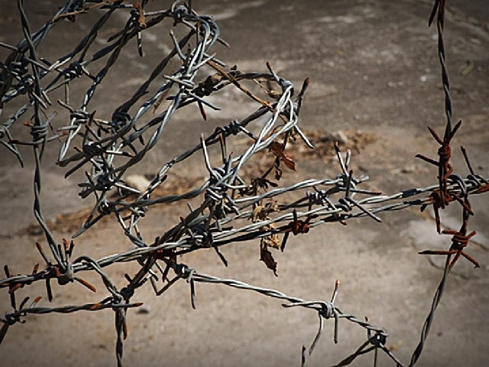 Photo in Cityscape #war #barbed wire #punk bands #slf belfast #barbed wire love