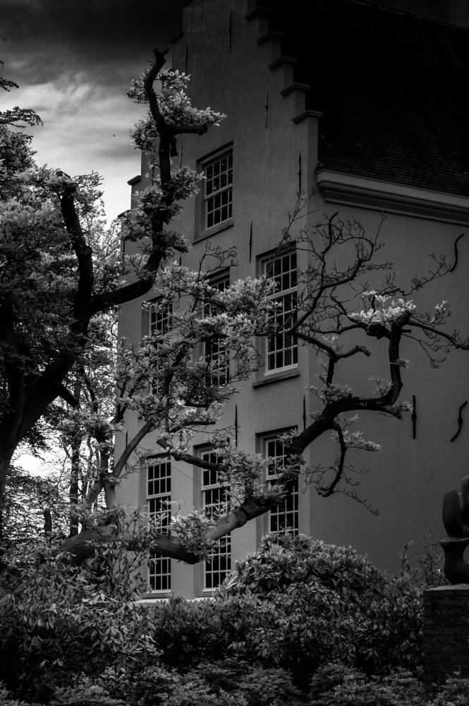 Photo in Black and White #b&w #abbey #building #black and white