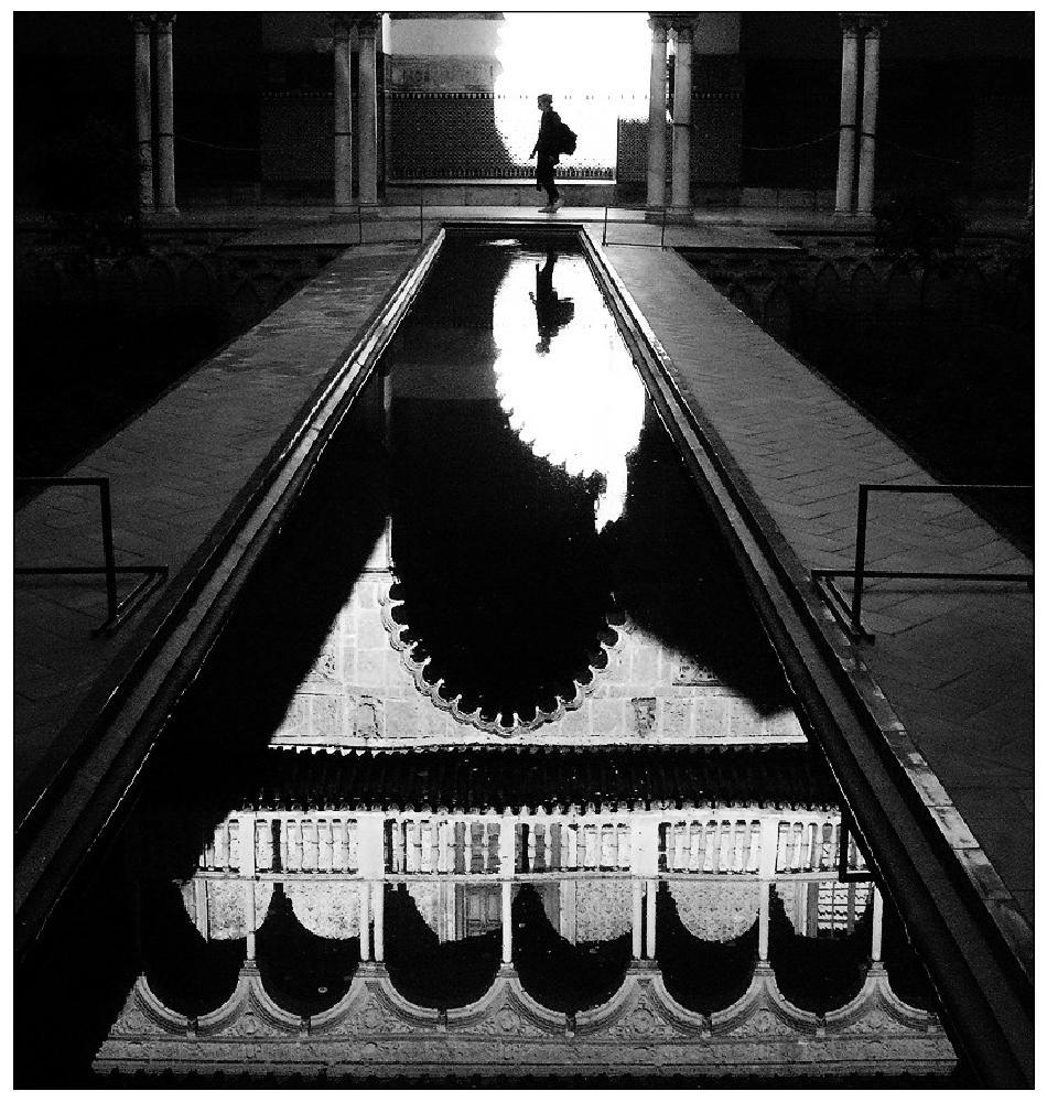 Photo in Black and White #bw #siviglia #robertobon