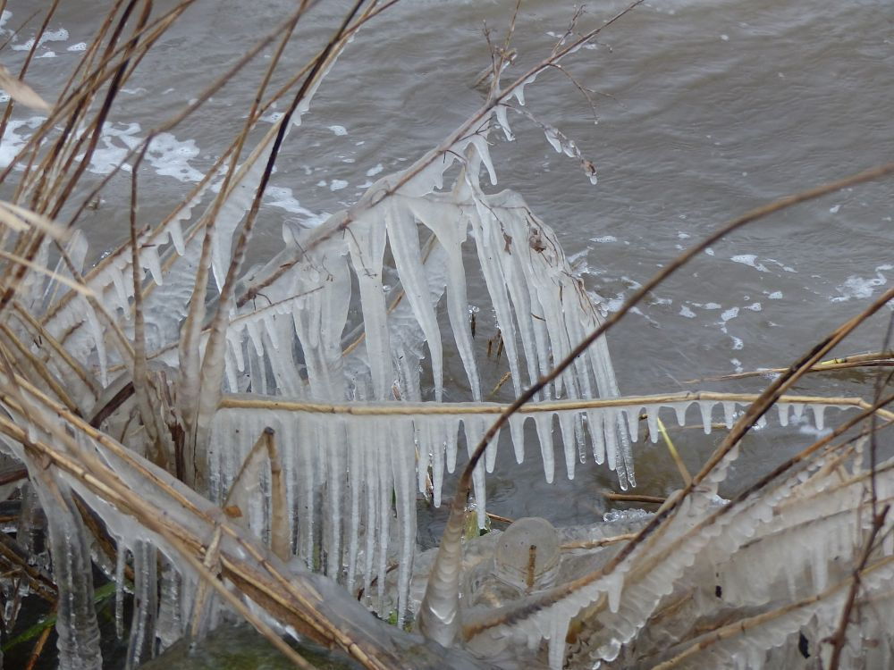 Photo in Nature #ice #water #sculpture