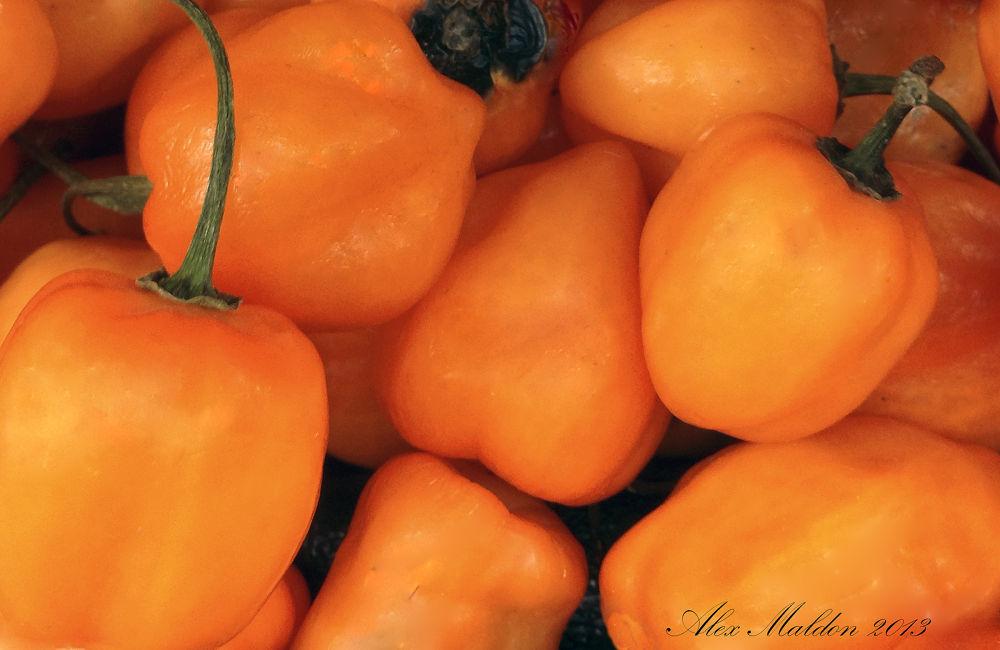 Photo in Random #peppers #veggies #vegitables #farm