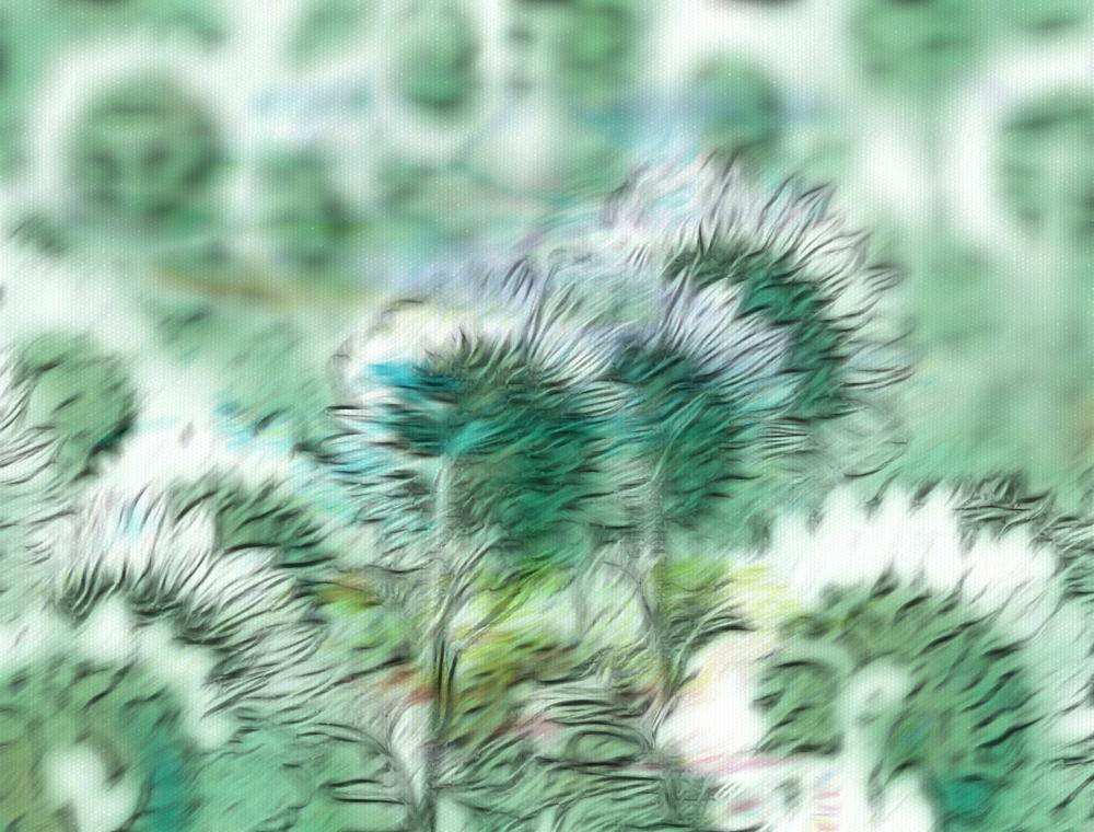 Photo in Fine Art #fine art #impressions #flowers #pastels #sunflowers