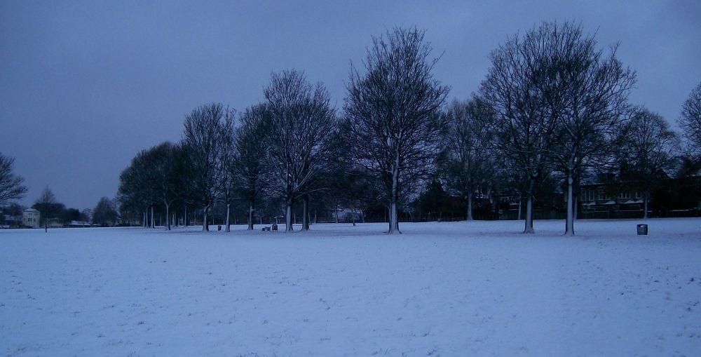 Photo in Random #winter #snow #cold #field