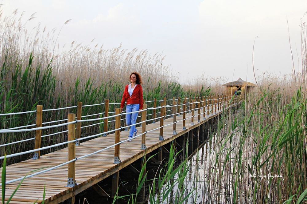 Photo in Nature #sultan sazlığı milli parkı #kayseri