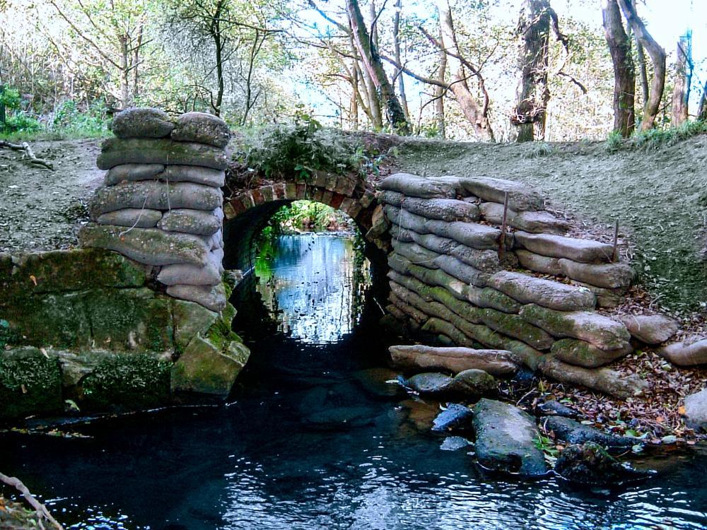 Photo in Landscape #tunnel #bridge #water #stream #brook #trees