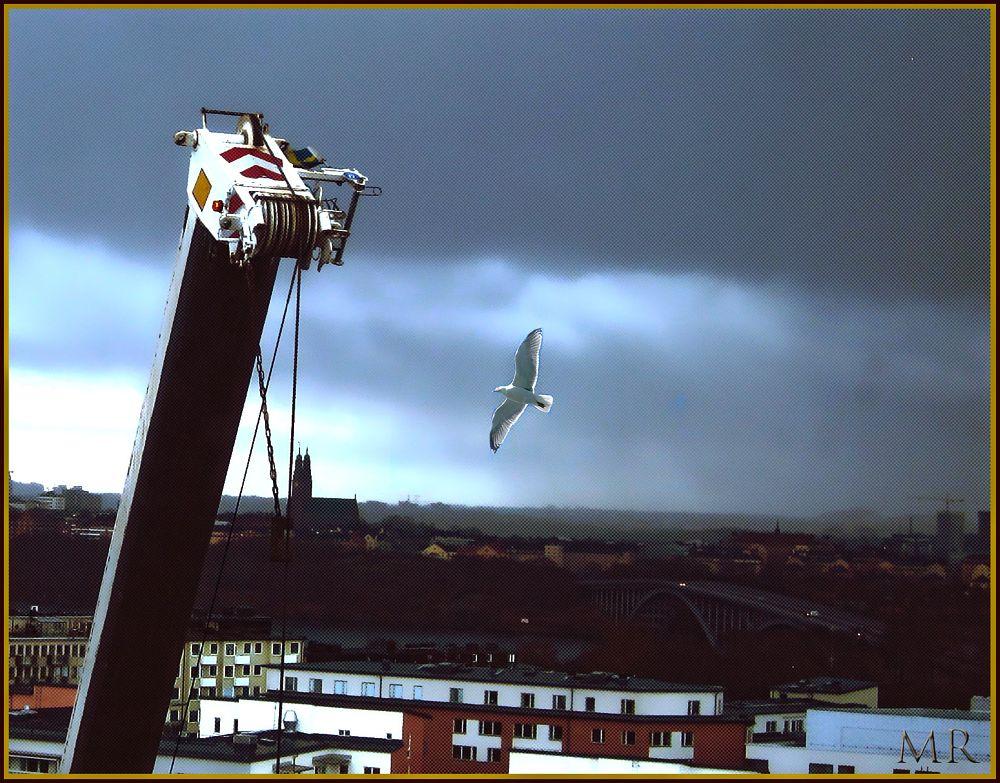 Photo in Journalism #panorama over stockholm #rain coming #build in progress