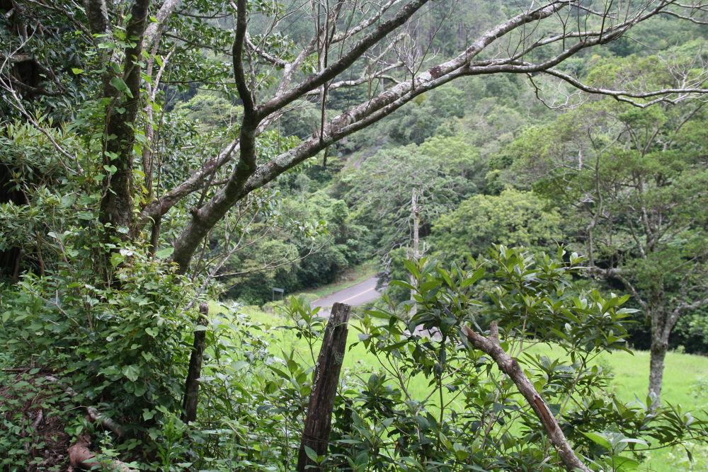 Photo in Landscape #alto lino