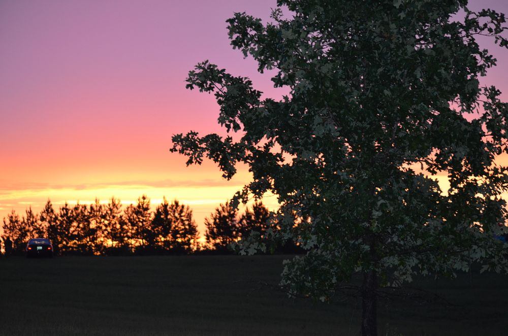 Photo in Landscape #kawliga #sunset #4th of july #nightfall #evening #alabama