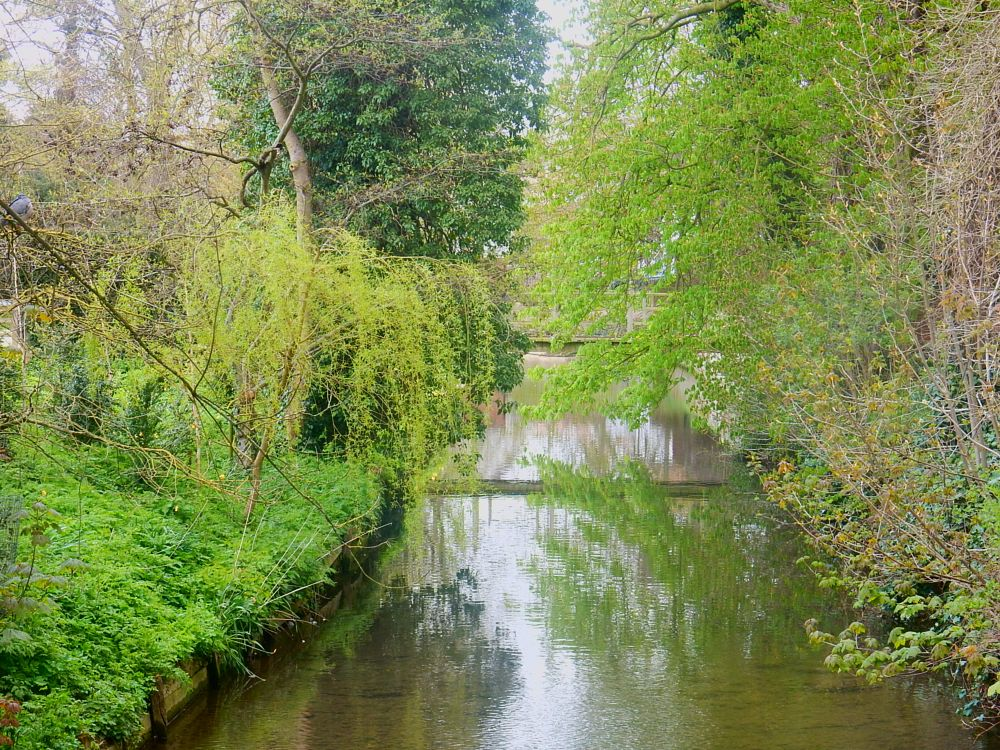 Photo in Landscape #linton #cambs #cambridgeshire #river #water #scenic #england