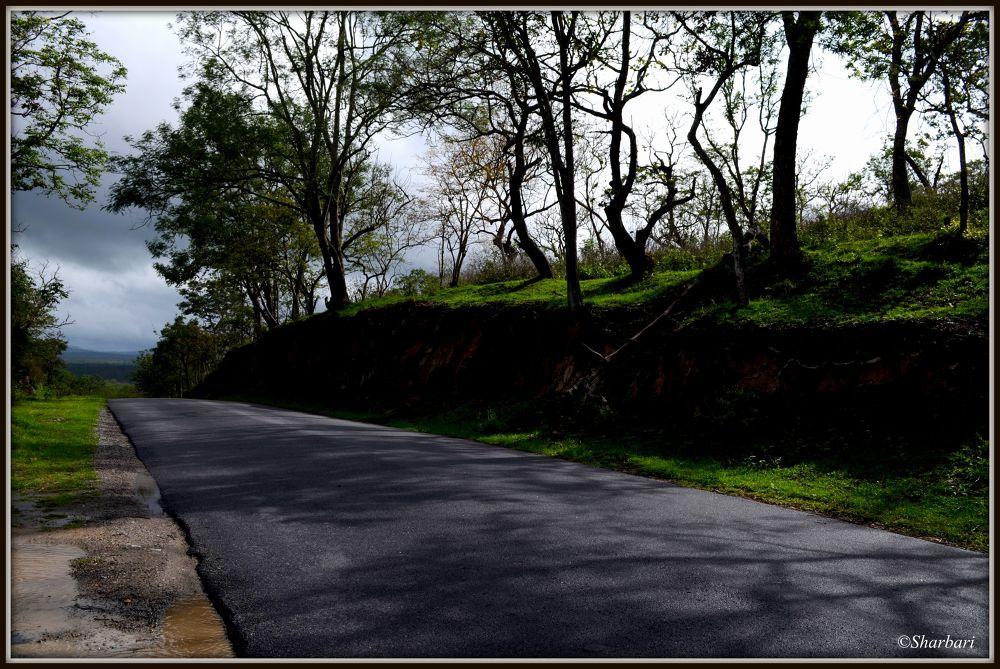 Photo in Landscape #nature #road #shadow #landscape
