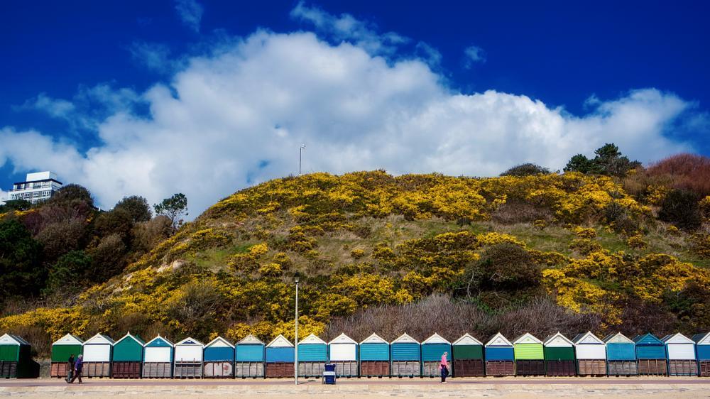 Photo in Sea and Sand #beach #sea #seaside #beach huts #cliffs #gorse #bournemouth