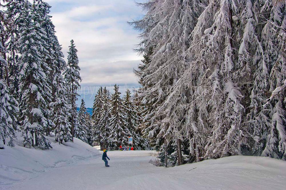 Photo in Landscape #les arcs #france #alps #savoie #tarentise #paradiski #mountain landscape #snow #trees #skiing #snowboarding #vacation #winter #french alps #vallandry #photograph