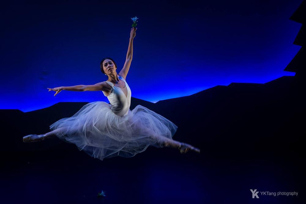 Photo in Concert #giselle #dance #ballet #art performance